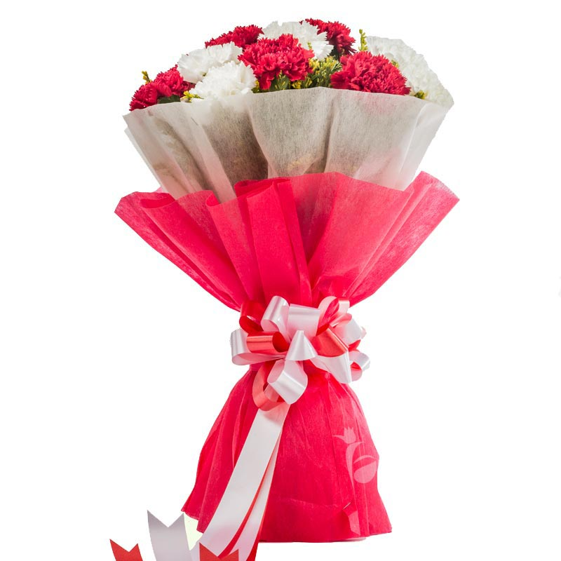 10 Red Carnations and 10 White Carnations Bouquet with Front View
