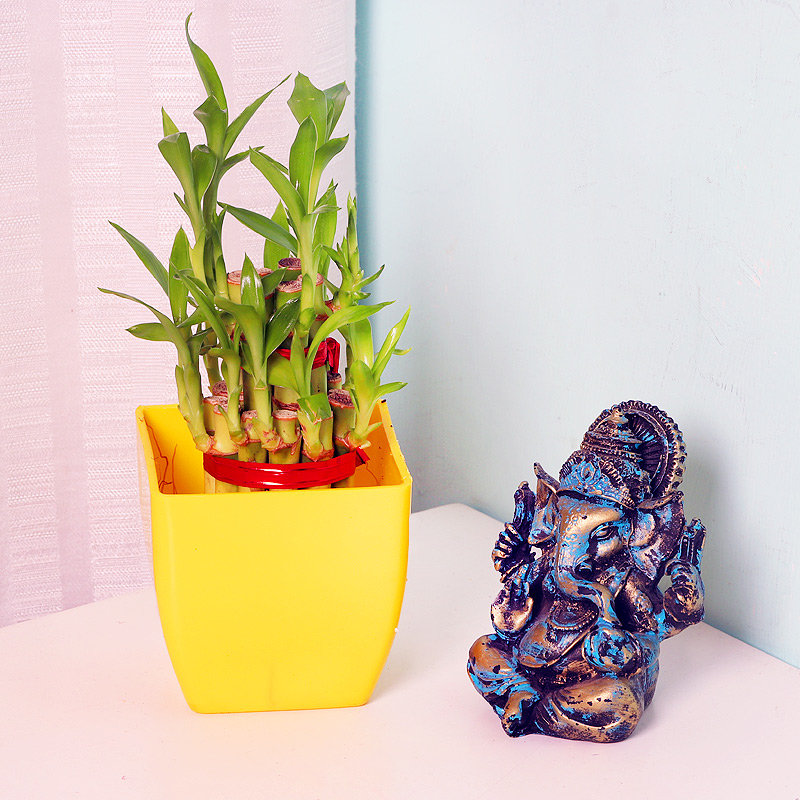 2 Layer Lucky Bamboo with Ganesha Statue