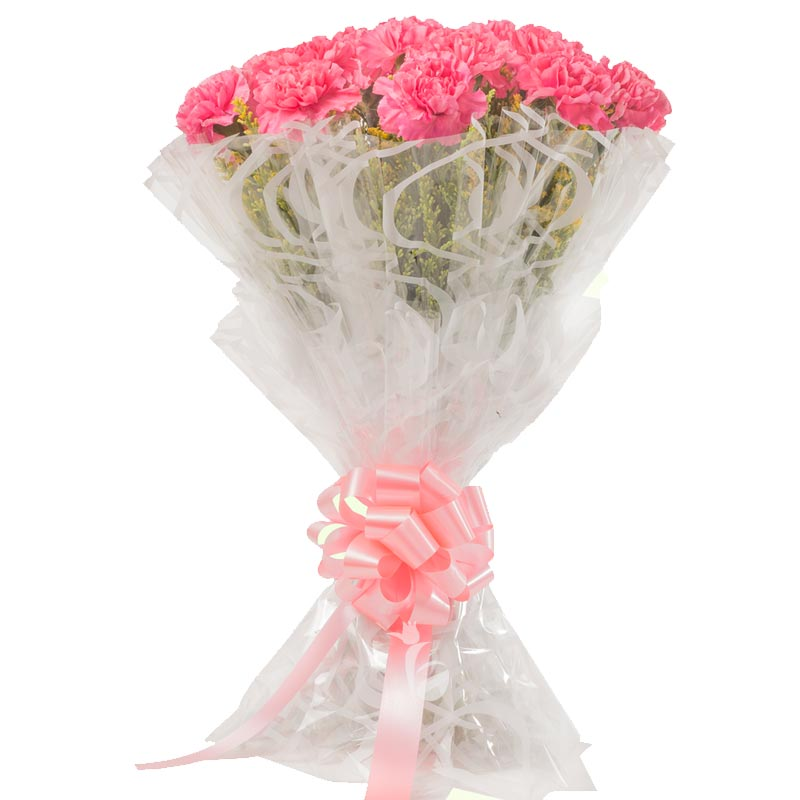 20 Pink Carnations with Front View