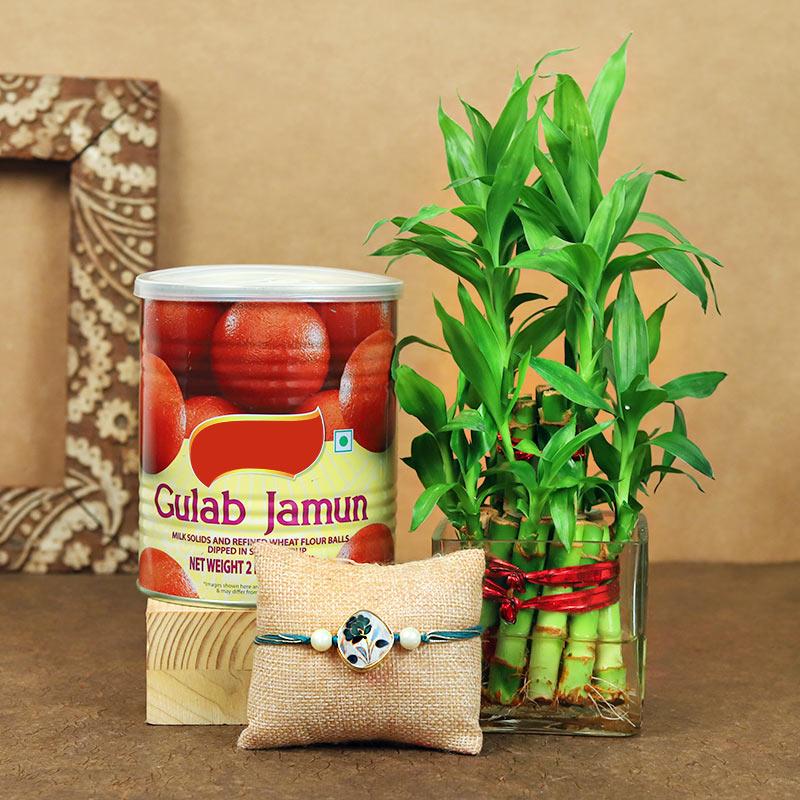 Rudraksha Rakhi With Gulab Jamun N Bamboo Plant