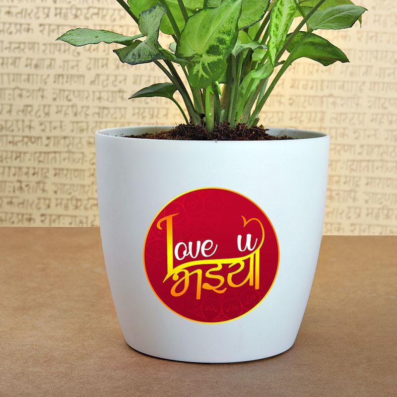 Love U Bhaiya Rakhi Combo
