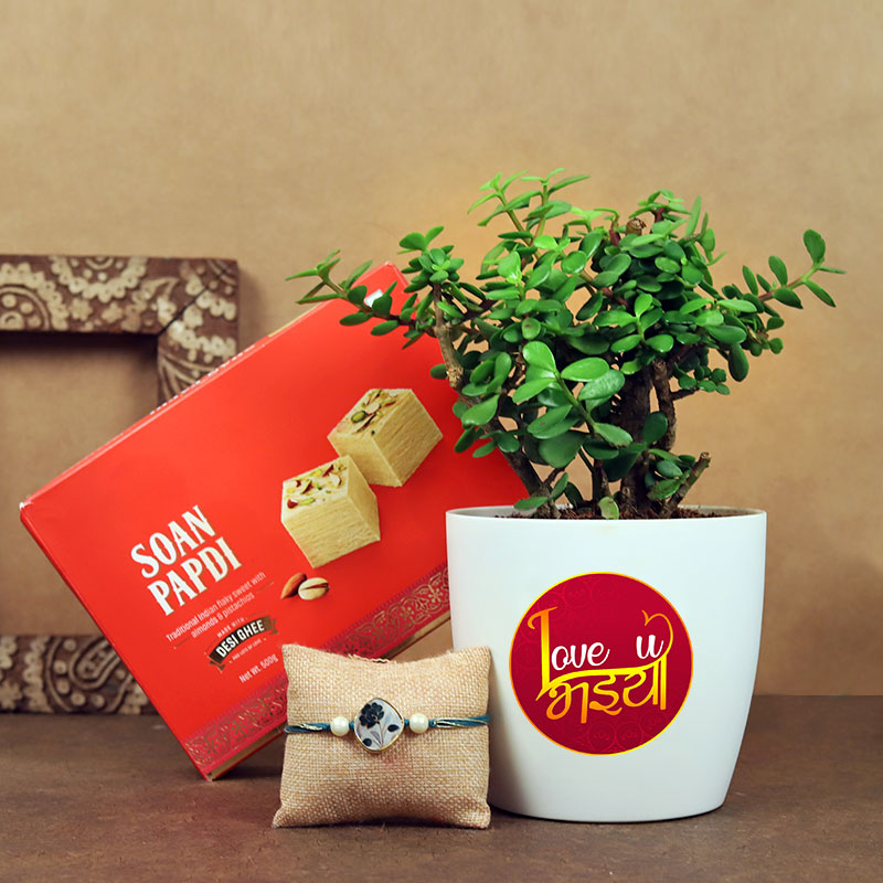 Rakhi Jade Plant N Soan Papdi