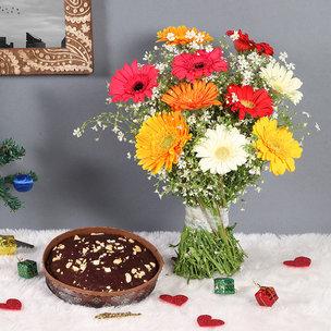 Mixed Gerberas with Plum Cake Combo