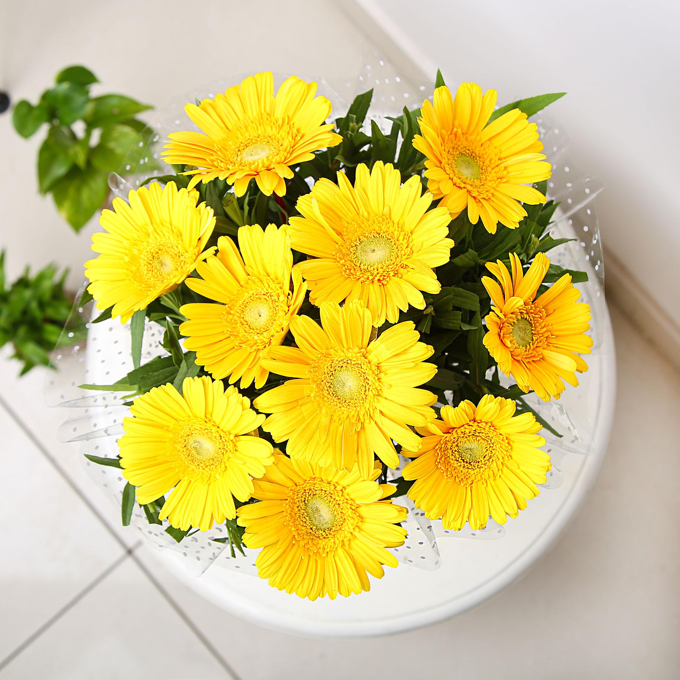 Image 3 of 10 Yellow Gerberas Bunch