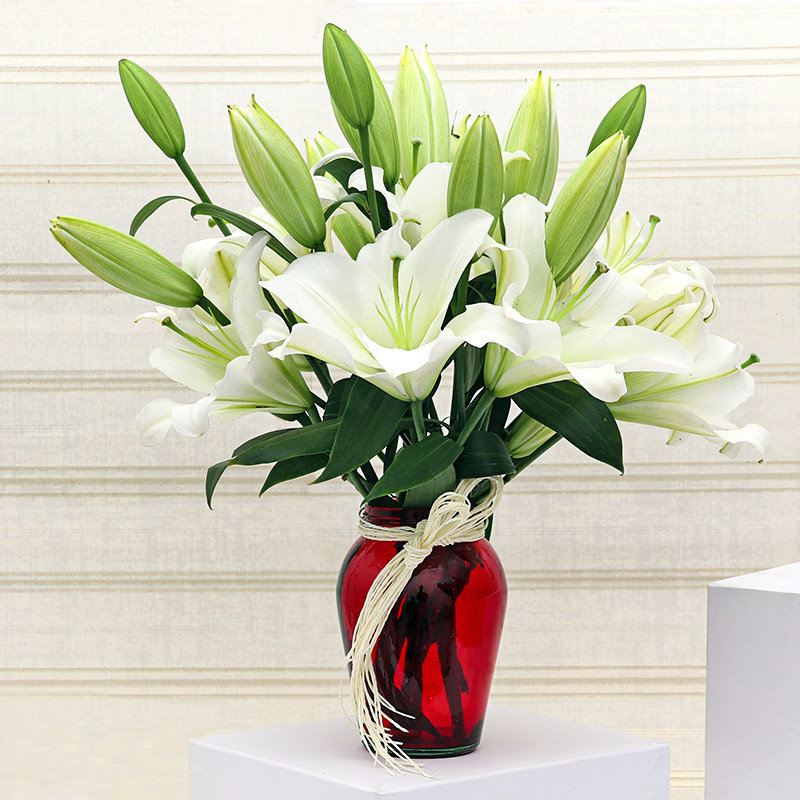 White Lily N Glass Vase: Arrangement of 8 White Lilies