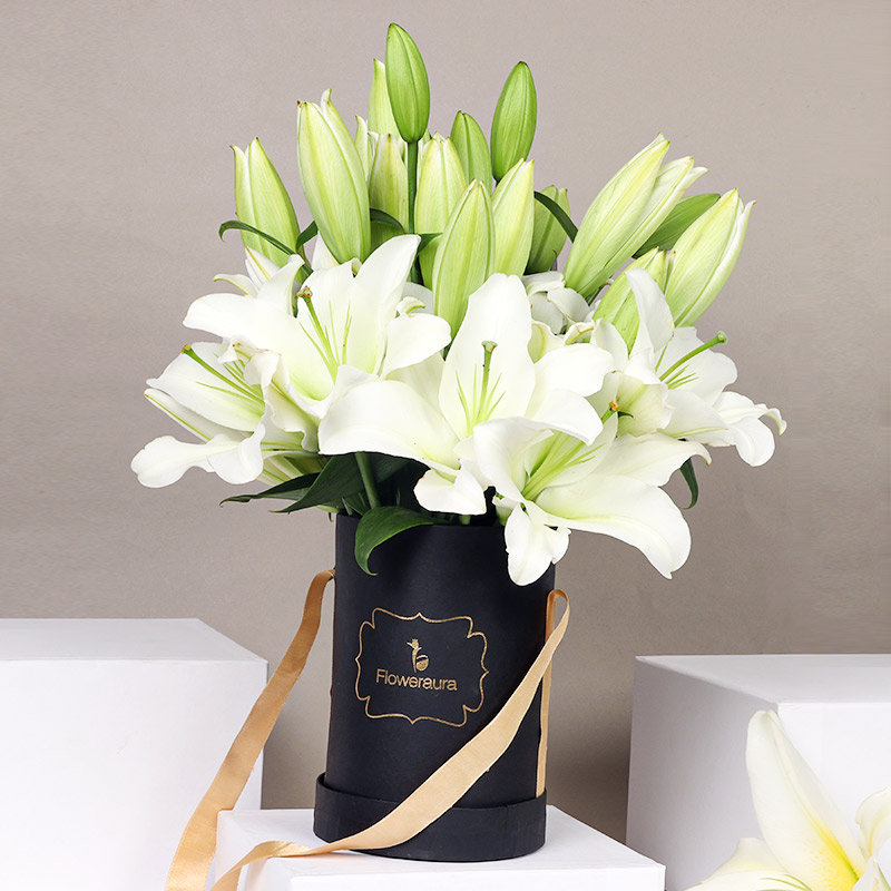 White Peaceful Lilies: Arrangement of 8 White Lilies