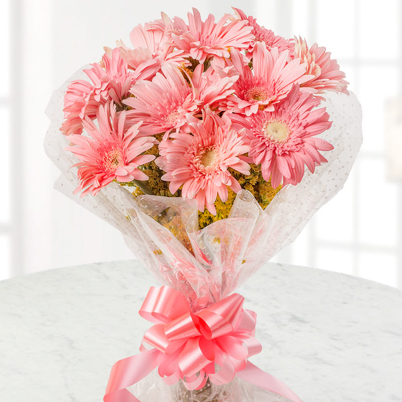 10 Pink Gerberas Bunch