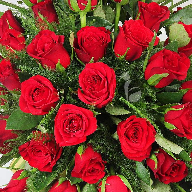 100 Red Roses Arrangement in Zoomed in View