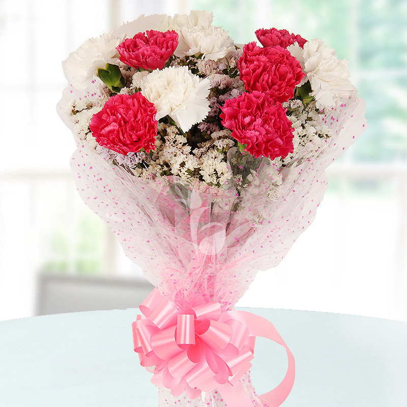 10 Pink and White Carnations with Front View