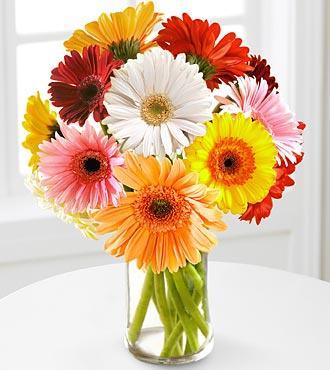 Send Flower Bunch