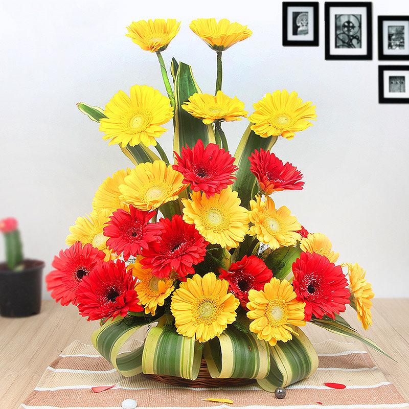 20 Red and Yellow Gerberas Arrangement