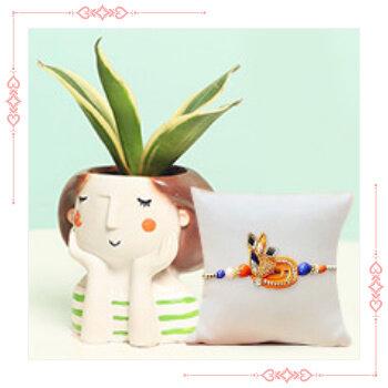 Buy Rakhi with plants online