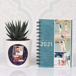 Haworthia Plant and New Year Diary 2021 Combo Gift