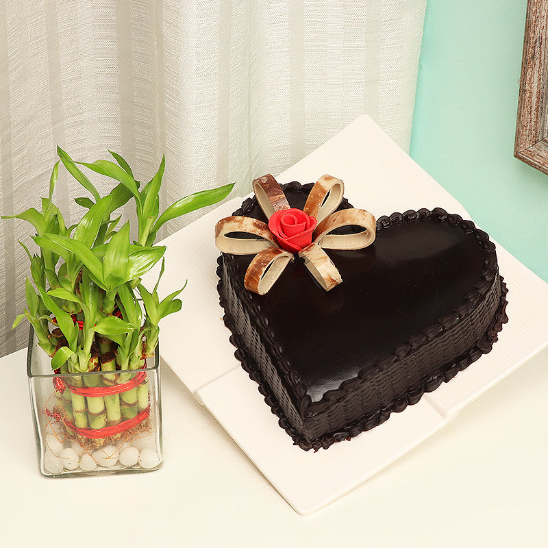2 Layer Bamboo with Heart Shaped Chocolate Cake Combo