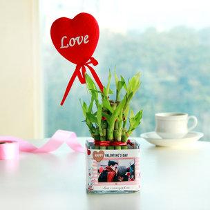 Bamboo Love Tag Plant