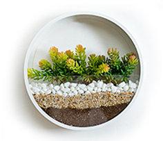 Plant Pebbles
