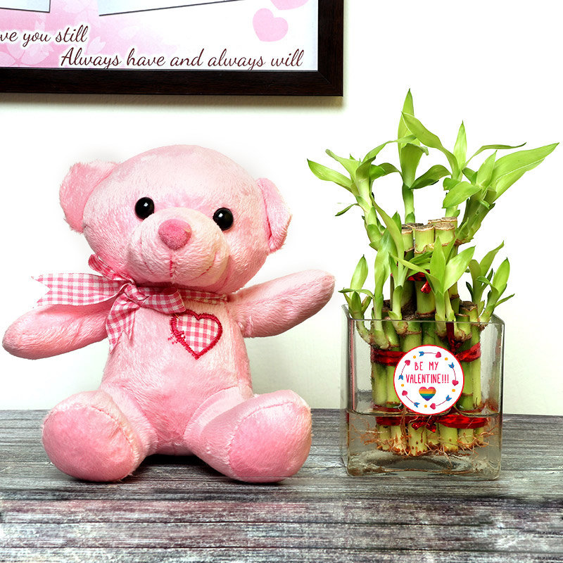 Valentine Day Teddy With 2 Layer Lucky Bamboo