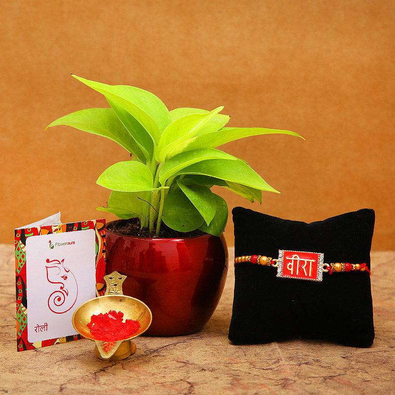 Blessings For Veera Rakhi - A Rakhi Gift Hamper for Brother
