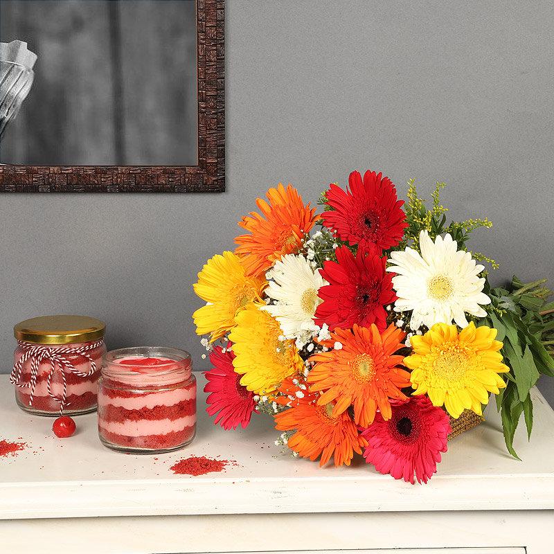 Blooming Red Velvet - Bunch of 12 Mixed Gerberas with 2 Red Velvet Jar Cakes
