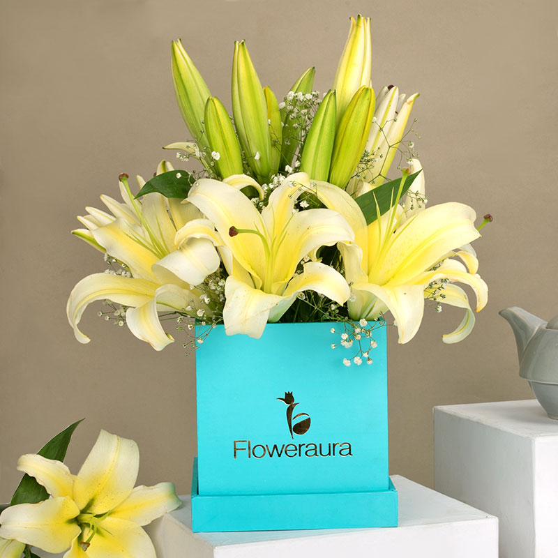 Box Of Lily