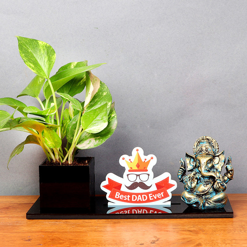 Desk Plant for Dad