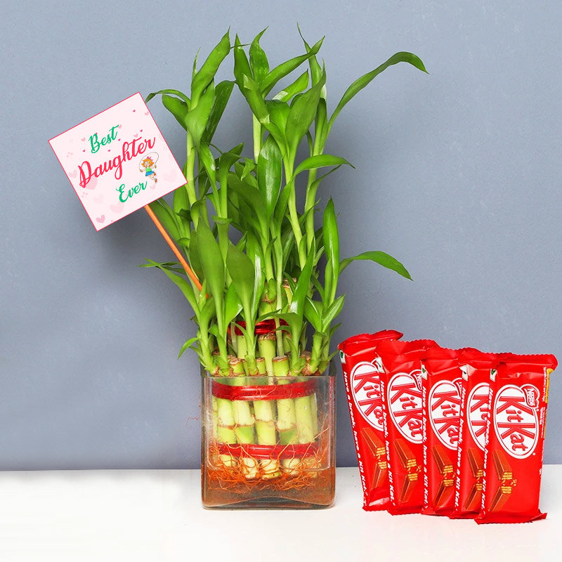 Chocolates with Lucky Bamboo for Daughter