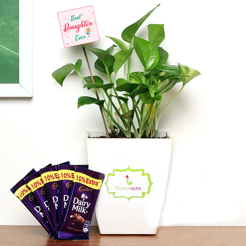 Money Plant with Chocolates for Daughter