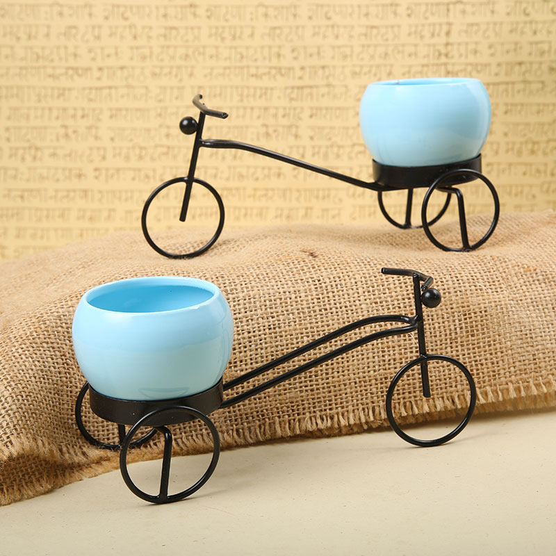 Decorative Cycle Planters