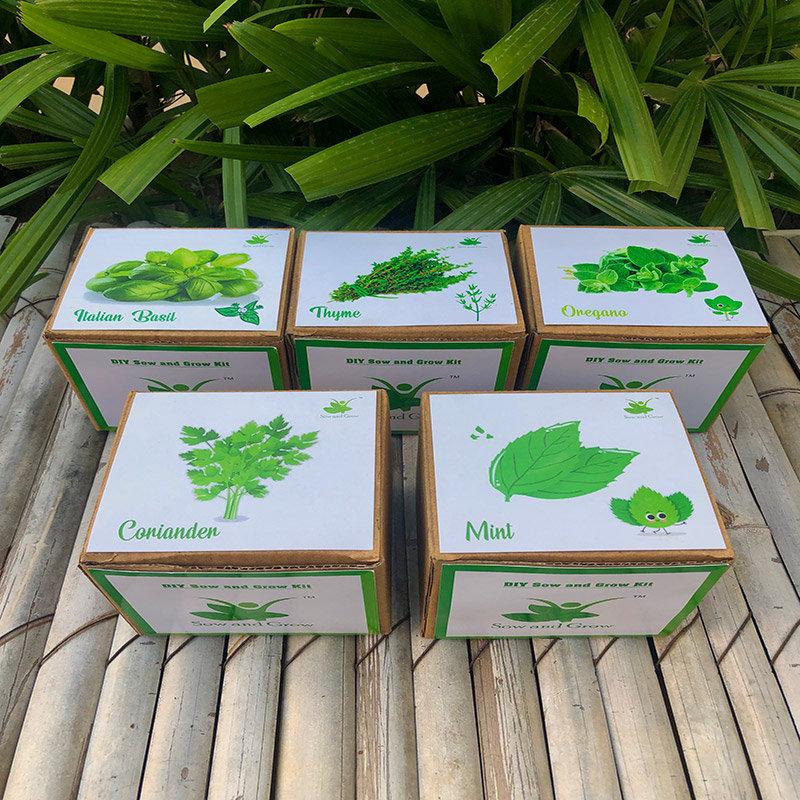 Diy All Herbs Gardening Kit