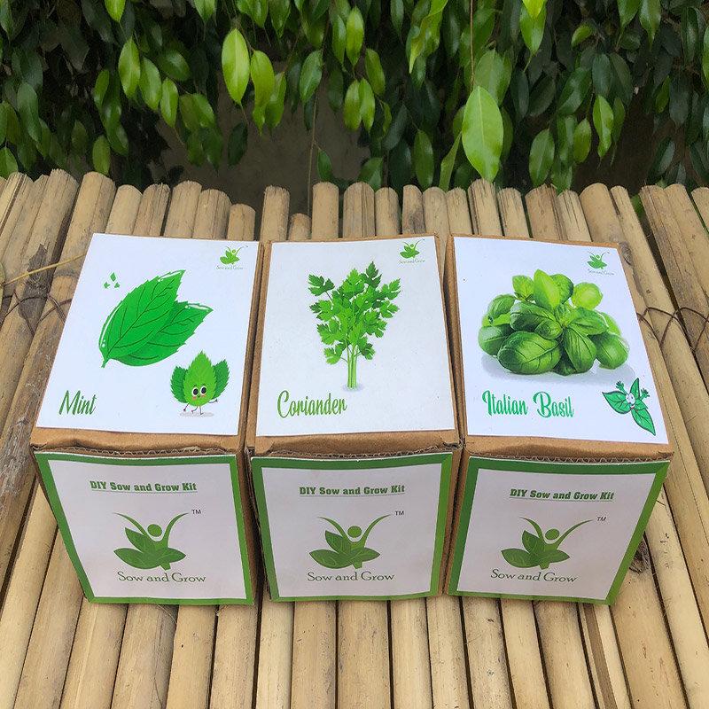 Diy Triple Herb Gardening Kits