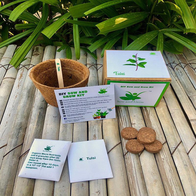 Diy Tulsi Gardening Kit