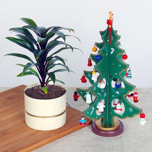 Xmas Gift Combo of Dracena Plant and Christmas Tree Showpiece
