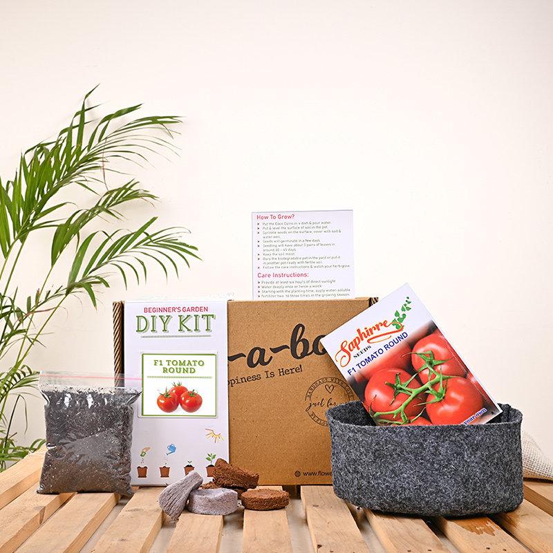 Easy Diy Tomato Herb Kit