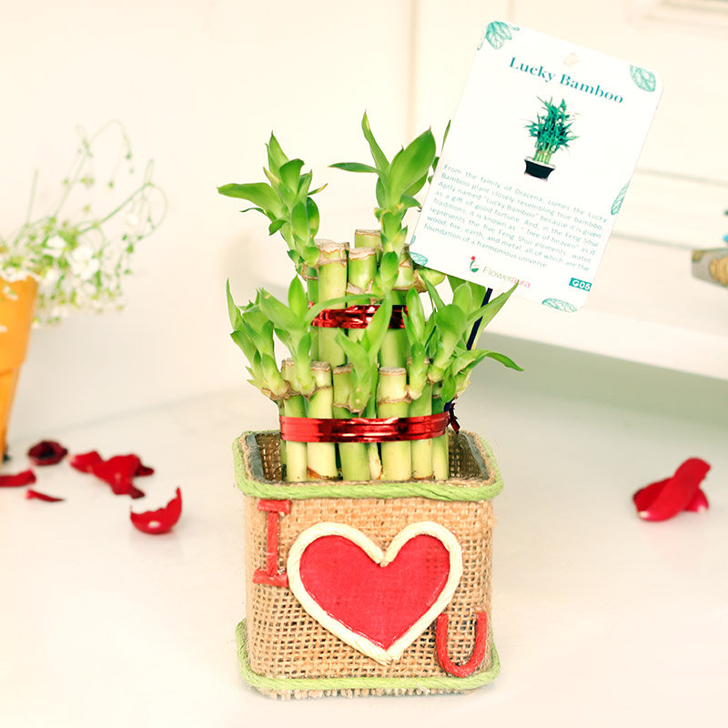 Two Layer Bamboo in Jute Packing with I Love You Pasted in it
