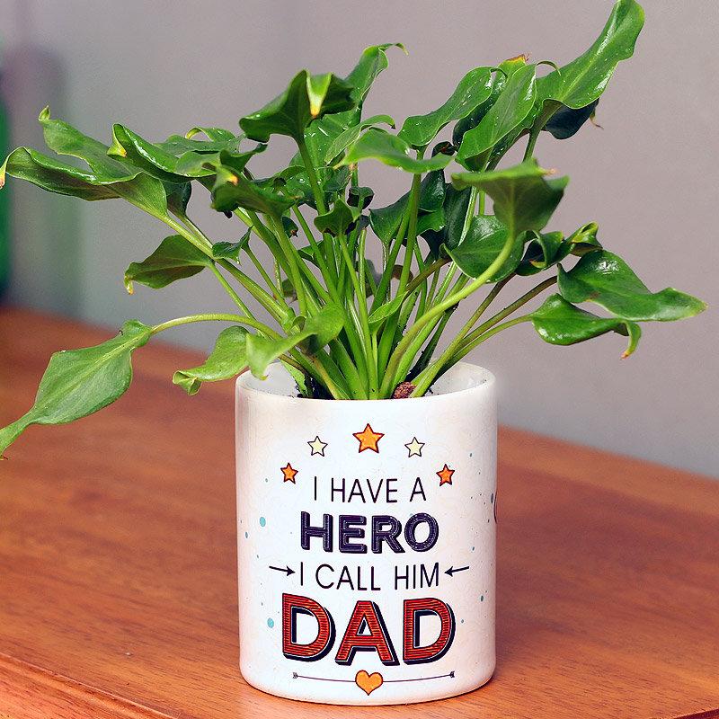 Green Xanadu Plant in White Vase for Dad