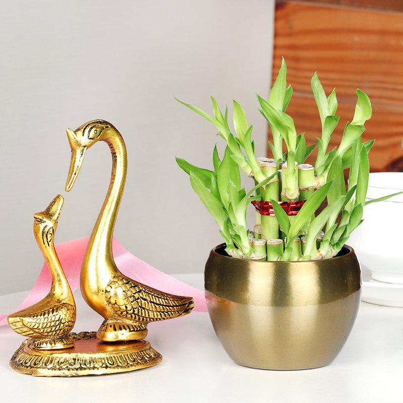 Fengshui Bamboo Duck Gift