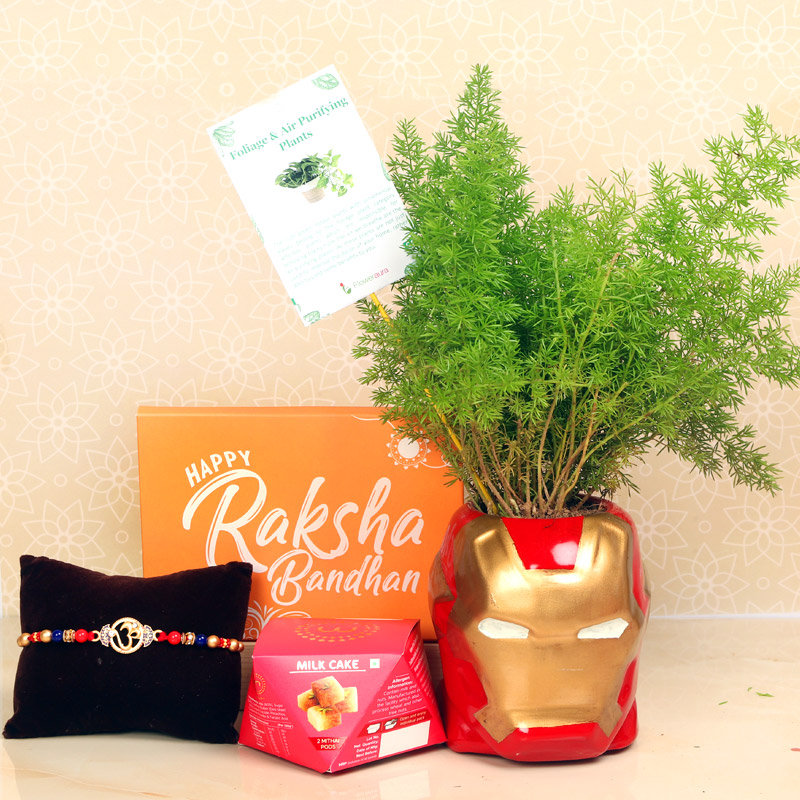 Fern Rakhi Plant - One Divine Rakhi with Roli and Chawal and 2 Mithai Pods of Misht Milk Cake and Air Purifying Plant in Iron Man Vase