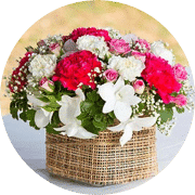 Flower Bouquet for Christmas