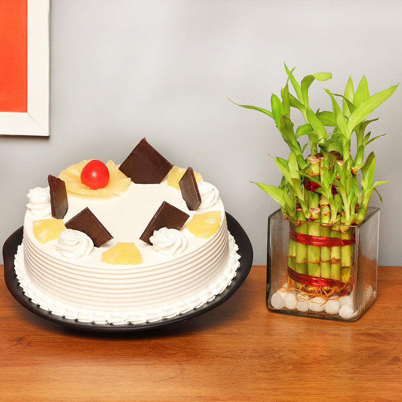 2 Layer Bamboo with Pineapple Cake Combo