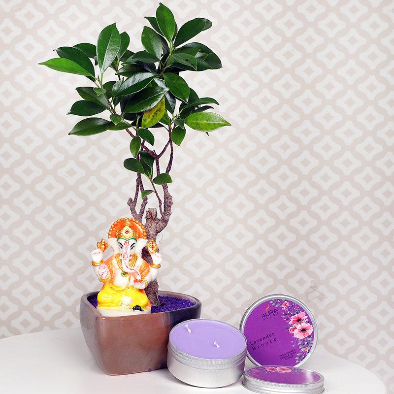 Ganesha Bonsai Candle Combo