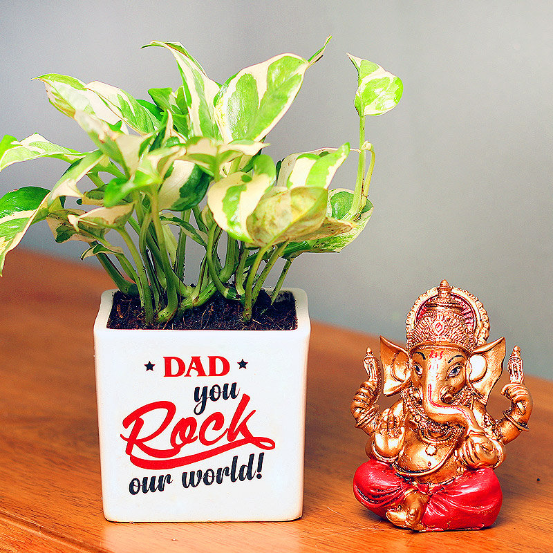 White Pothos Plant and God Idol Combo for Dad