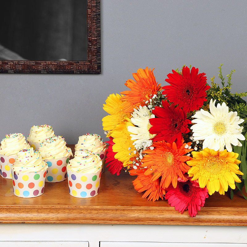 Gerbera Luv Sprinkle Combo - Bunch of 12 Mixed Gerberas with 6 Vanilla Cup Cakes
