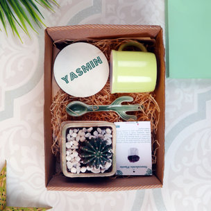 A Plant Box Combo Gift Pack
