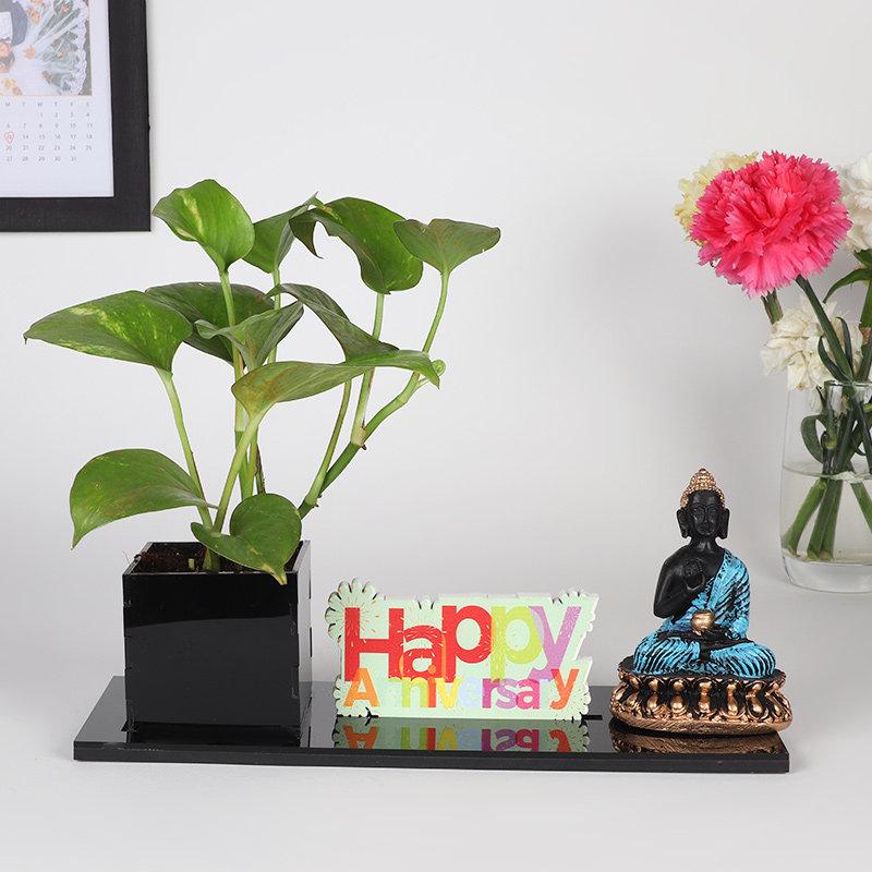 Good Luck Anniversary Combo: Good Luck