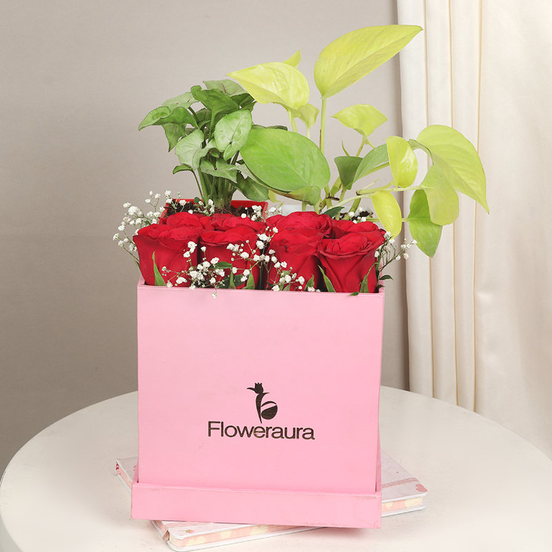 Arrangement of Red Roses and Money Plant in Flower Box