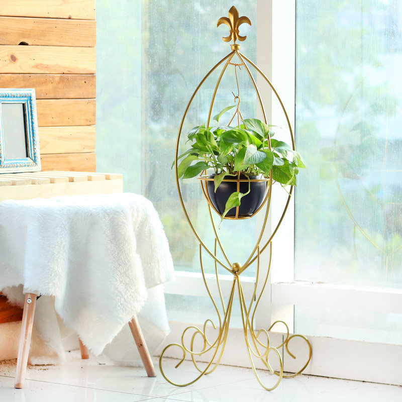 Green Luck - Good Luck Plant Indoors in Swinging Metal Stand