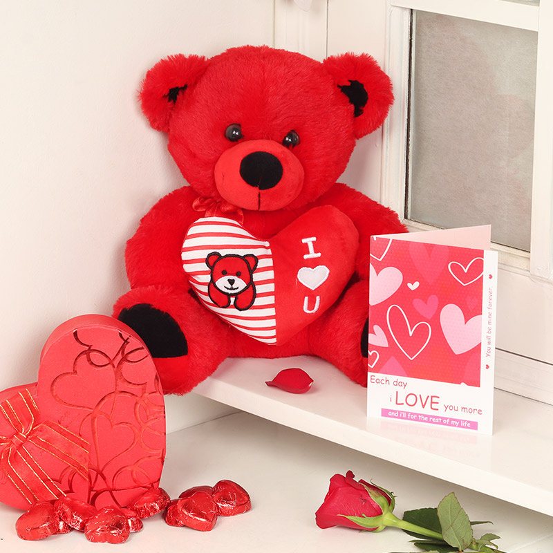 Teddy with Card and Chocolates Love Combo