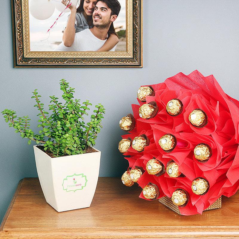 Jade Rochers Love - Indoor Good Luck Plant with Floweraura Chatura Vase Bouquet of 16 Ferrero Rocher Chocolates