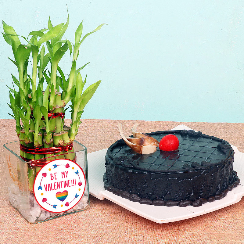 Valentine Special Cake with 2 Layer Bamboo Plant