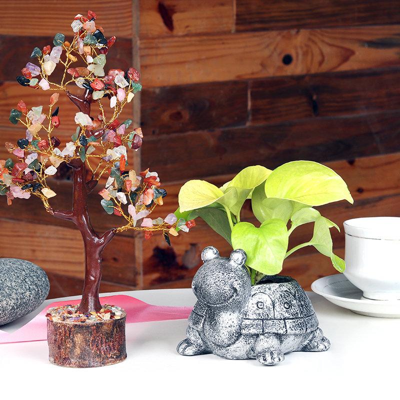 Money N Fengshui Tree Combo
